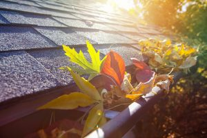 roof repair Colonial Height