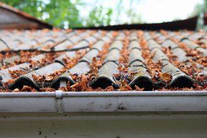 Roof Leak Repair Richmond